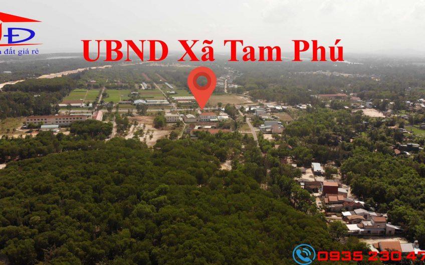 Mua đất Tam Phú diện tích lớn giá rẻ